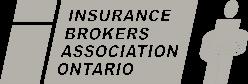 IBAO Logo